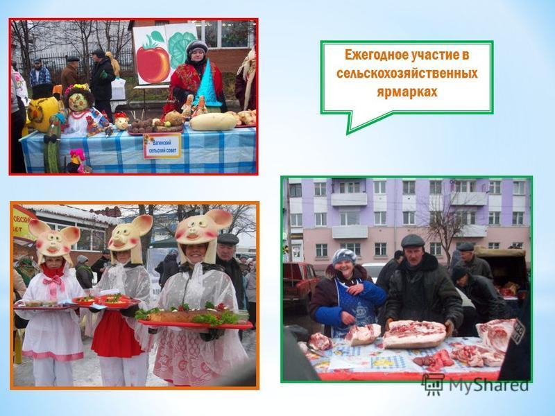 Ежегодное участие в сельскохозяйственных ярмарках