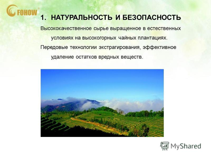 1. НАТУРАЛЬНОСТЬ И БЕЗОПАСНОСТЬ Высококачественное сырье выращенное в естественных условиях на высокогорных чайных плантациях. Передовые технологии экстрагирования, эффективное удаление остатков вредных веществ.