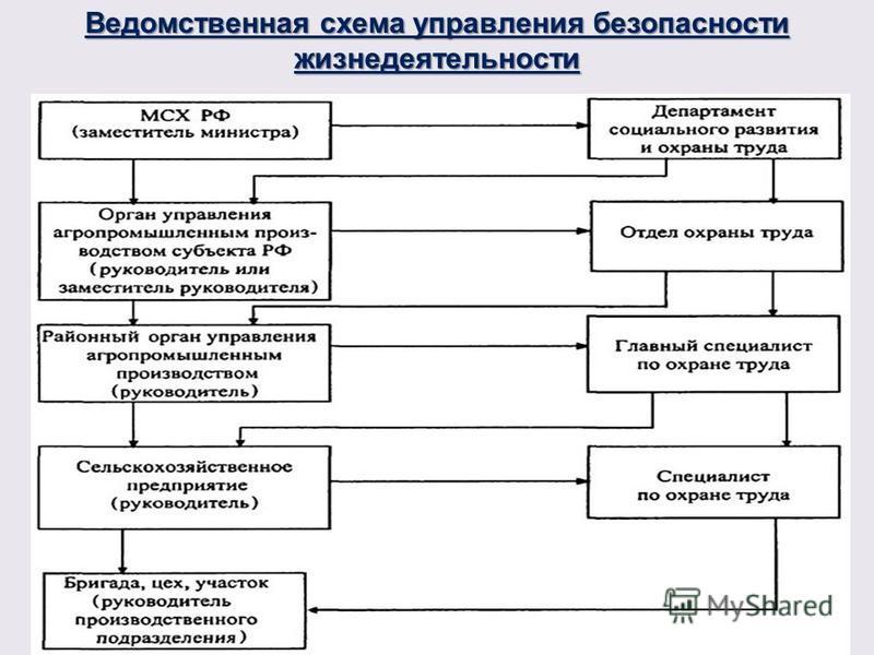 Ведомственная схема управления безопасности жизнедеятельности