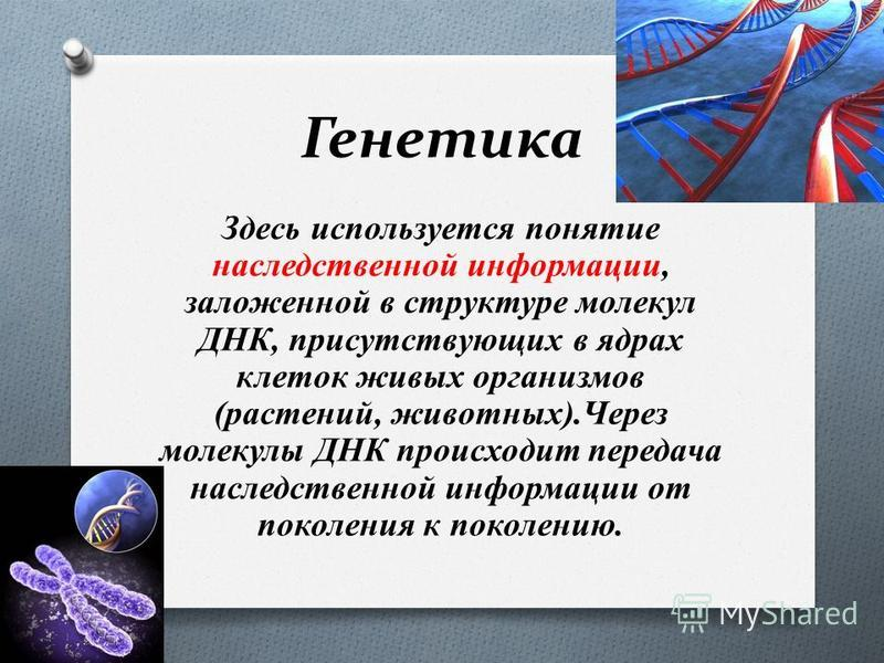 Генетика Здесь используется понятие наследственной информации, заложенной в структуре молекул ДНК, присутствующих в ядрах клеток живых организмов (растений, животных).Через молекулы ДНК происходит передача наследственной информации от поколения к пок
