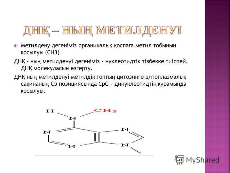 Метилдену дегеніміз органикалы қ қ оспа ғ а метил тобыны ң қ осылуы (СН3) ДН Қ - ны ң метилденуі дегеніміз – нуклеотидтік тізбекке тиіспей, ДН Қ молекула сын ө згерту. ДН Қ ны ң метилденуі метилдік торты ң цитозинге цитоплазмы қ са қ инаны ң C5 позиц