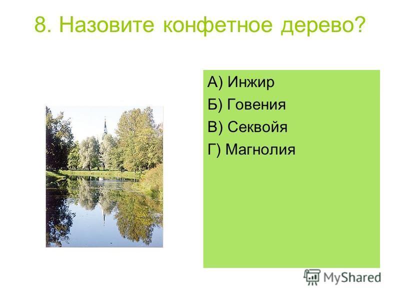 8. Назовите конфетное дерево? А) Инжир Б) Говения В) Секвойя Г) Магнолия
