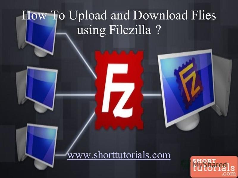 How To Upload and Download Flies using Filezilla ? www.shorttutorials.com