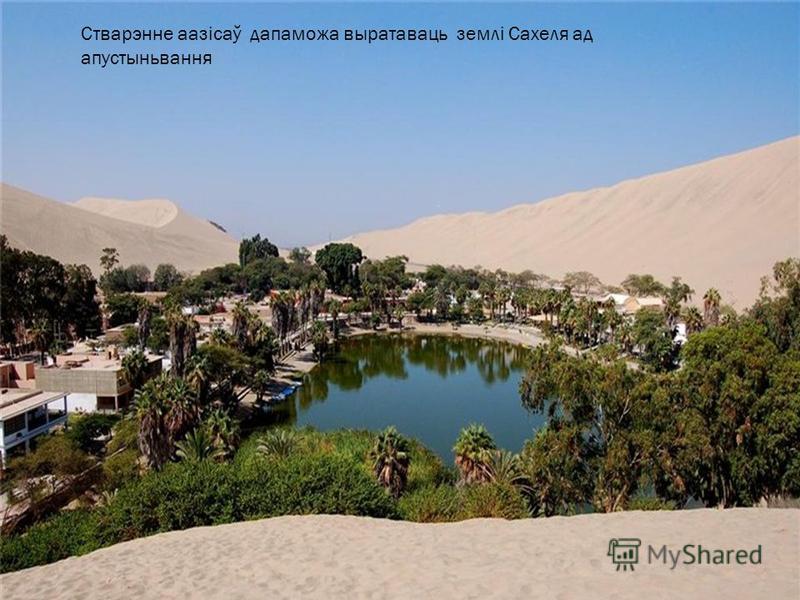 Стварэнне аазісаў дапаможа выратаваць землі Сахеля ад апустыньвання