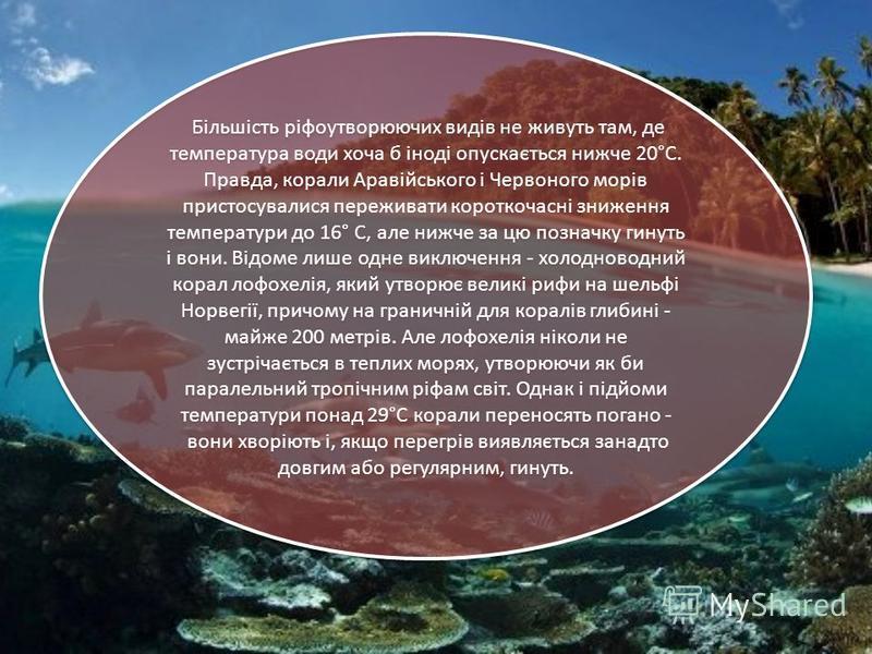 Більшість ріфоутворюючих видів не живуть там, де температура води хоча б іноді опускається нижче 20°С. Правда, корали Аравійського і Червоного морів пристосувалися переживати короткочасні зниження температури до 16° С, але нижче за цю позначку гинуть