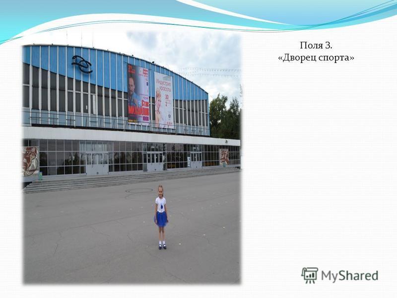 Поля З. «Дворец спорта»
