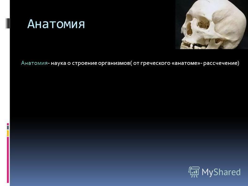 Анатомия Анатомия- наука о строение организмов( от греческого «анатоме»- рассечение)