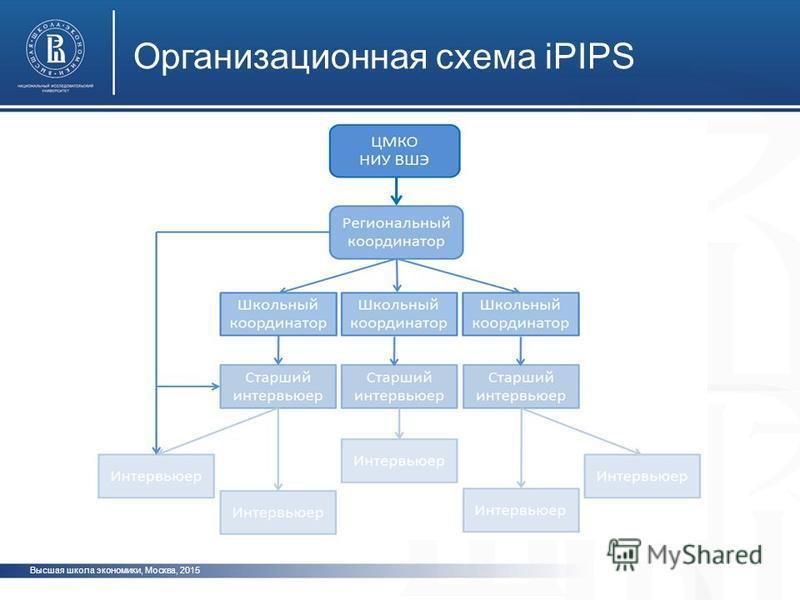 Высшая школа экономики, Москва, 2015 Организационная схема iPIPS фото ото