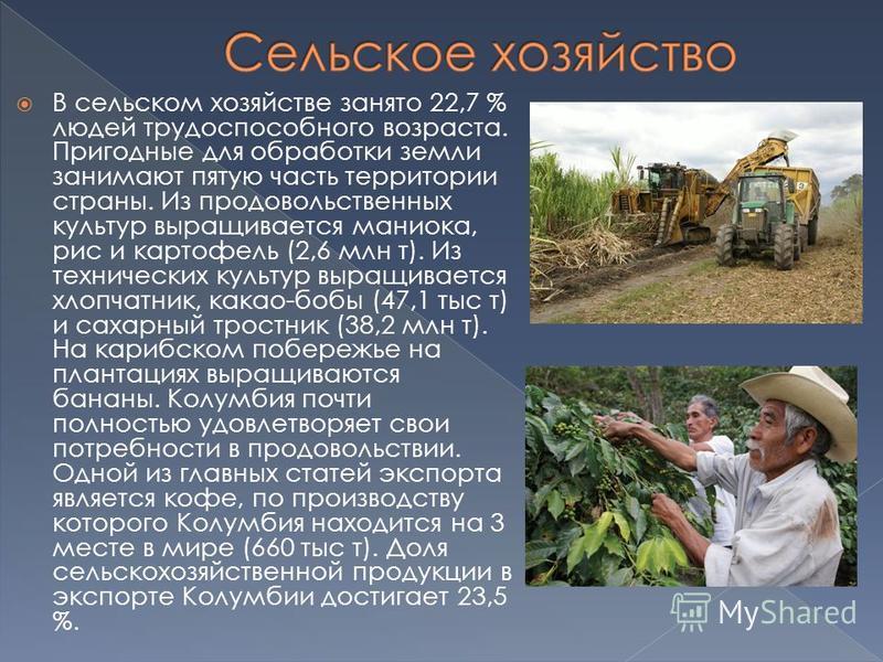 В сельском хозяйстве занято 22,7 % людей трудоспособного возраста. Пригодные для обработки земли занимают пятую часть территории страны. Из продовольственных культур выращивается маниока, рис и картофель (2,6 млн т). Из технических культур выращивает