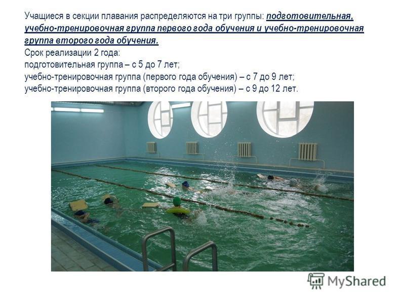Учащиеся в секции плавания распределяются на три группы: подготовительная, учебно-тренировочная группа первого года обучения и учебно-тренировочная группа второго года обучения. Срок реализации 2 года: подготовительная группа – с 5 до 7 лет; учебно-т