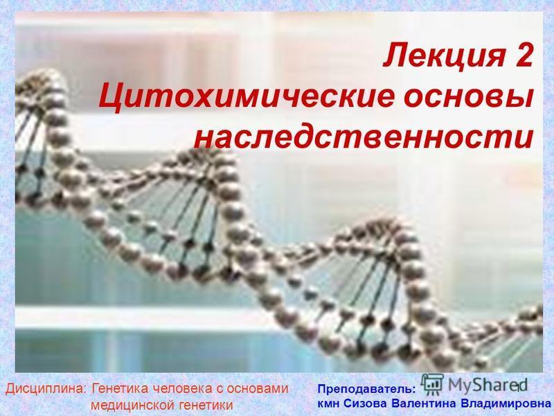 1 Лекция 2 Цитохимические основы наследственности Преподаватель: кмн Сизова Валентина Владимировна Дисциплина: Генетика человека с основами медицинской генетики
