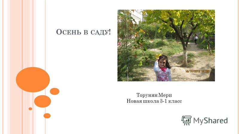 Торунян Мери Новая школа 3-1 класс О СЕНЬ В САДУ !