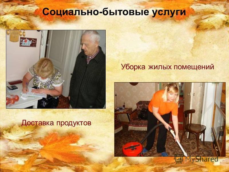 Социально-бытовые услуги Уборка жилых помещений Доставка продуктов