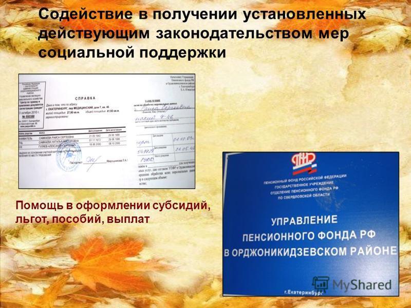 Содействие в получении установленных действующим законодательством мер социальной поддержки Помощь в оформлении субсидий, льгот, пособий, выплат