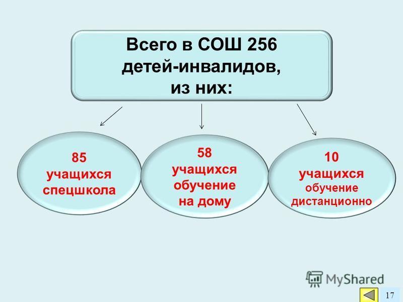 17 Всего в СОШ 256 детей-инвалидов, из них: 85 учащихся спецшкола 58 учащихся обучение на дому 10 учащихся обучение дистанционно
