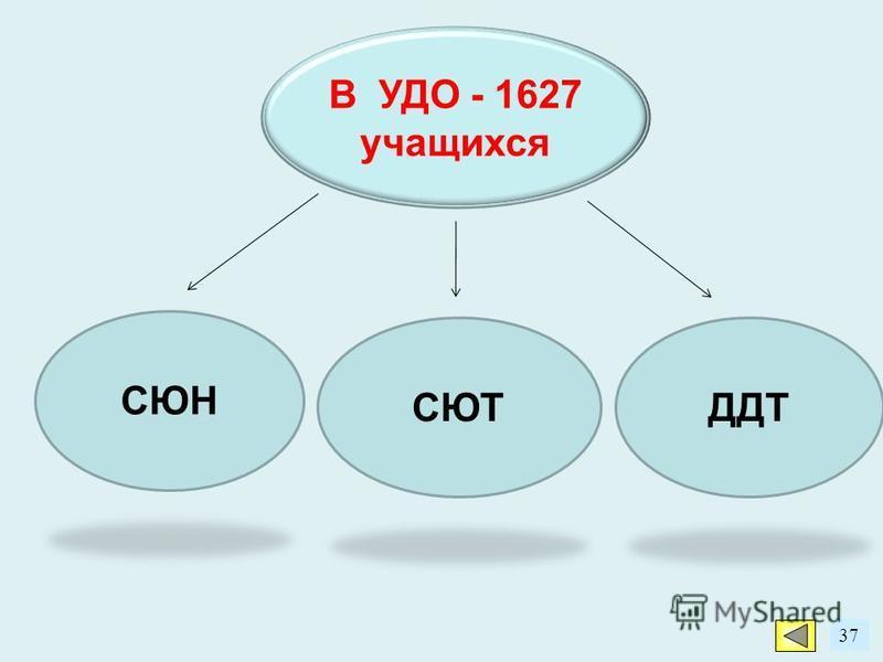 37 В УДО - 1627 учащихся ДДТСЮТ СЮН