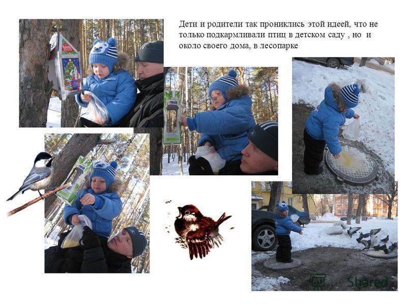 Дети и родители так прониклись этой идеей, что не только подкармливали птиц в детском саду, но и около своего дома, в лесопарке