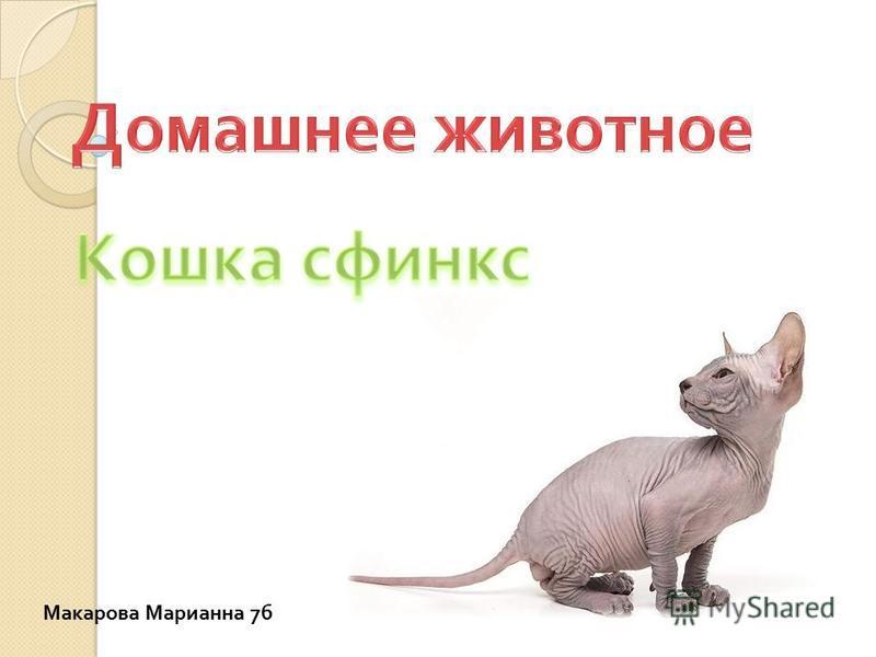 Макарова Марианна 7 б