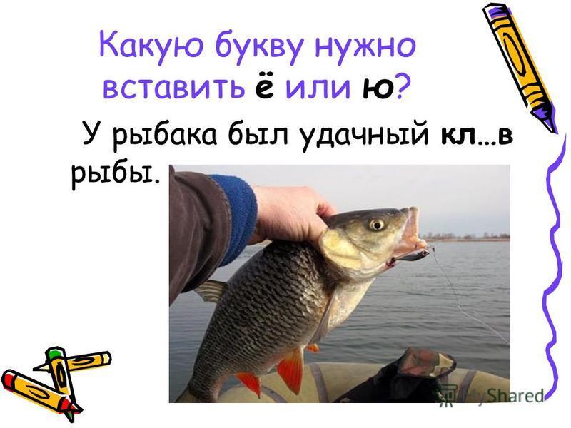 Какую букву нужно вставить ё или ю? У рыбака был удачный кл…в рыбы.