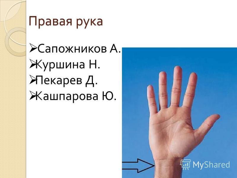 Правая рука Сапожников А. Куршина Н. Пекарев Д. Кашпарова Ю.