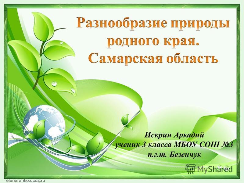 Искрин Аркадий ученик 3 класса МБОУ СОШ 3 п.г.т. Безенчук