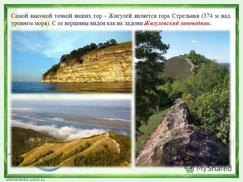 Самой высокой точкой наших гор - Жигулей является гора Стрельная (374 м над уровнем моря). С ее вершины виден как на ладони Жигулевский заповедник.