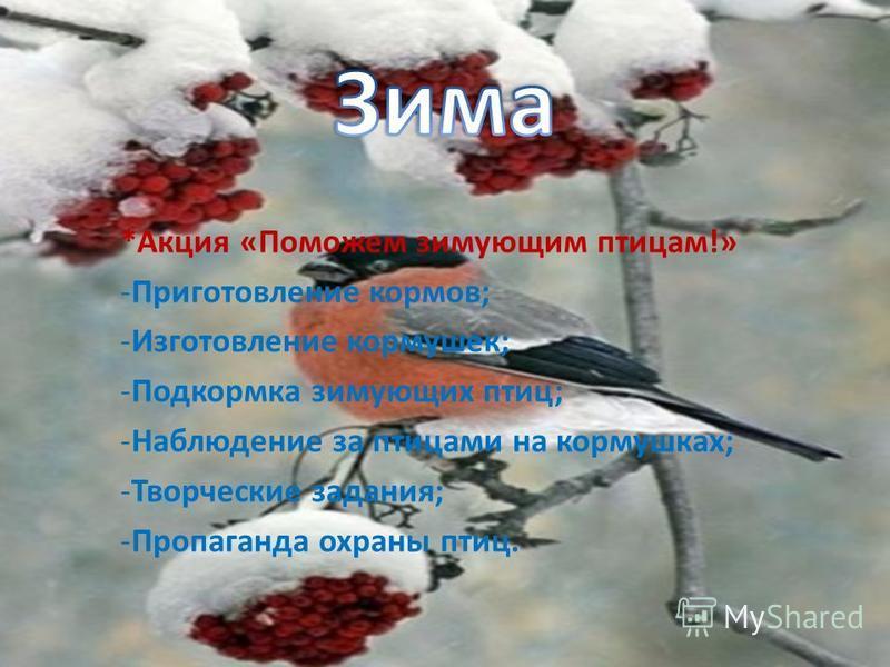 *Акция «Поможем зимующим птицам!» -Приготовление кормов; -Изготовление кормушек; -Подкормка зимующих птиц; -Наблюдение за птицами на кормушках; -Творческие задания; -Пропаганда охраны птиц.