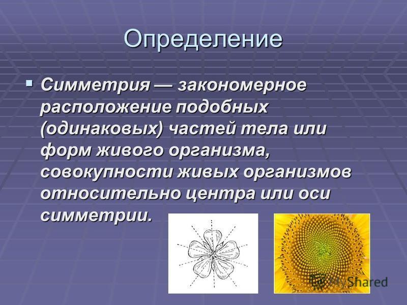 Определение Симметрия закономерное расположение подобных (одинаковых) частей тела или форм живого организма, совокупности живых организмов относительно центра или оси симметрии.