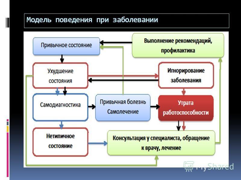 Модель поведения при заболевании