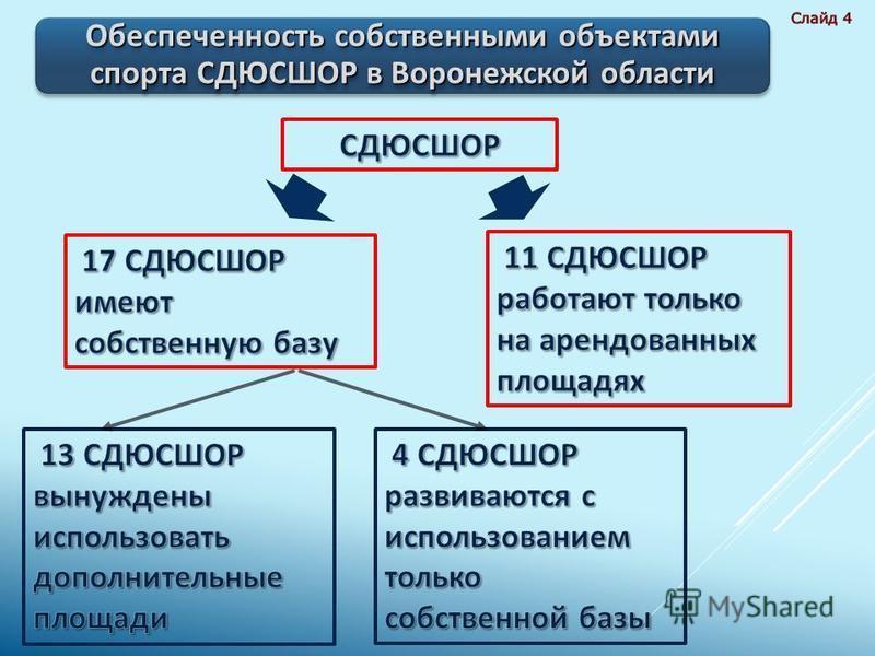 Обеспеченность собственными объектами спорта СДЮСШОР в Воронежской области