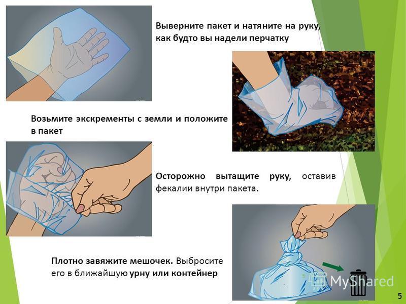 Выверните пакет и натяните на руку, как будто вы надели перчатку Возьмите экскременты с земли и положите в пакет Осторожно вытащите руку, оставив фекалии внутри пакета. Плотно завяжите мешочек. Выбросите его в ближайшую урну или контейнер 5 5