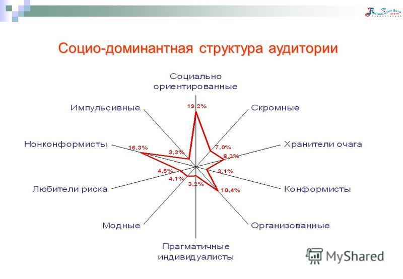 Социо-доминантная структура аудитории