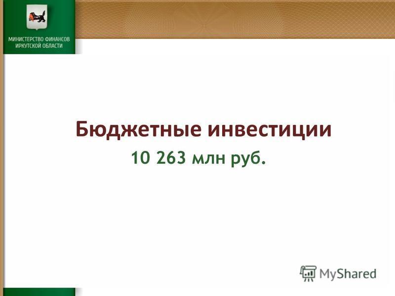 Бюджетные инвестиции 10 263 млн руб.