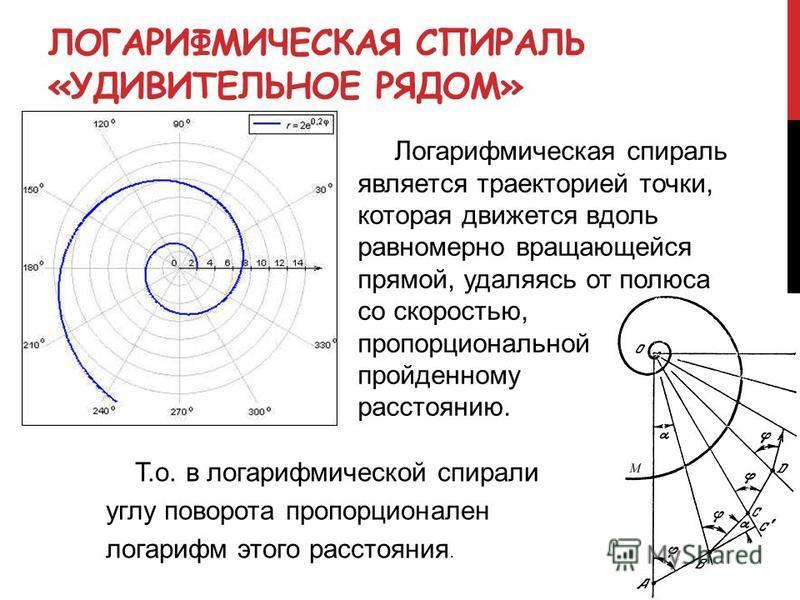ЛОГАРИФМИЧЕСКАЯ СПИРАЛЬ «УДИВИТЕЛЬНОЕ РЯДОМ» Логарифмическая спираль является траекторией точки, которая движется вдоль равномерно вращающейся прямой, удаляясь от полюса со скоростью, пропорциональной пройденному расстоянию. Т.о. в логарифмической сп