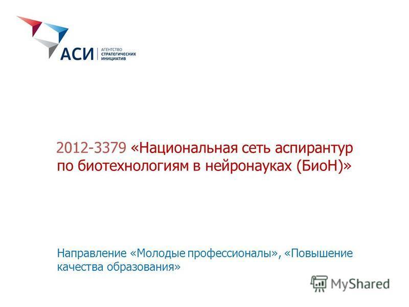 2012-3379 «Национальная сеть аспирантур по биотехнологиям в нейронауках (БиоН)» Направление «Молодые профессионалы», «Повышение качества образования»