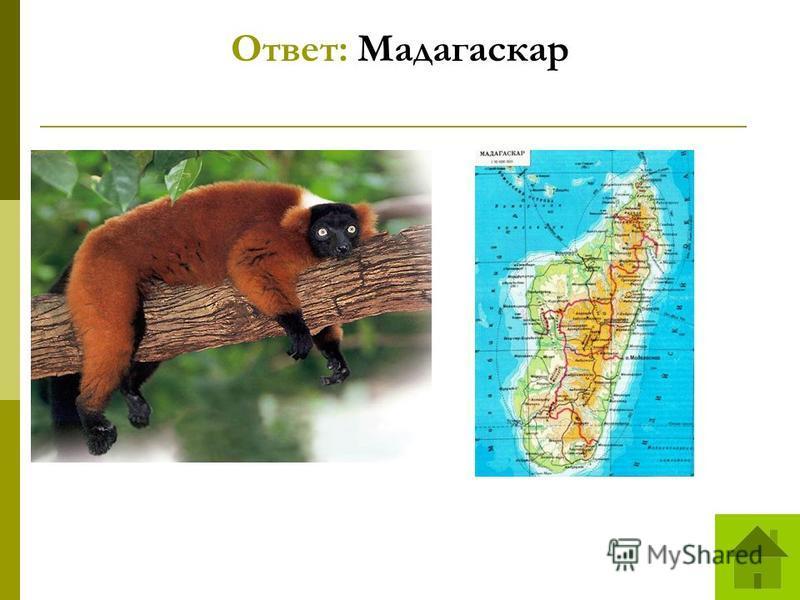 Ответ: Мадагаскар