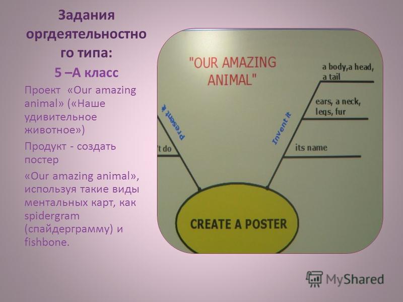 Задания орг деятельностного типа: 5 –А класс Проект «Our amazing animal» («Наше удивительное животное») Продукт - создать постер «Our amazing animal», используя такие виды ментальных карт, как spidergram (спайдерграмму) и fishbone.