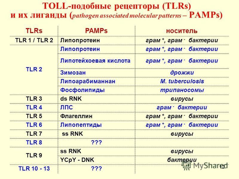ТОLL-подобные рецепторы (TLRs) и их лиганды ( pathogen associated molecular patterns – PAMPs) TLRsPAMPsноситель TLR 1 / TLR 2Липопротеинграм +, грам - бактерии TLR 2 Липопротеинграм +, грам - бактерии Липотейхоевая кислота грам +, грам - бактерии Зим