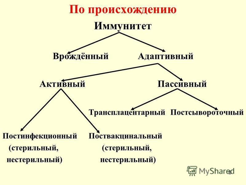 По происхождению Иммунитет Врождённый Адаптивный Активный Пассивный Трансплацентарный Постсывороточный Постинфекционный Поствакцинальный (стерильный, (стерильный, (стерильный, (стерильный, нестерильный) нестерильный) нестерильный) нестерильный) 6