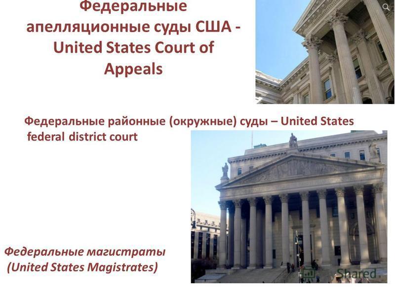 Федеральные апелляционные суды США - United States Court of Appeals Федеральные районные (окружные) суды – United States federal district court Федеральные магистраты (United States Magistrates)