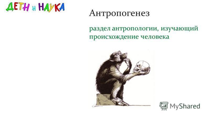 раздел антропологии, изучающий происхождение человека Антропогенез