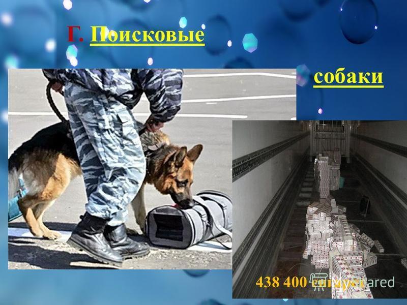 Г. Поисковые собаки 438 400 сигарет