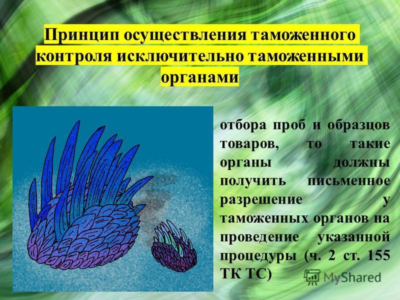 Принцип осуществления таможенного контроля исключительно таможенными органами отбора проб и образцов товаров, то такие органы должны получить письменное разрешение у таможенных органов на проведение указанной процедуры (ч. 2 ст. 155 ТК ТС)