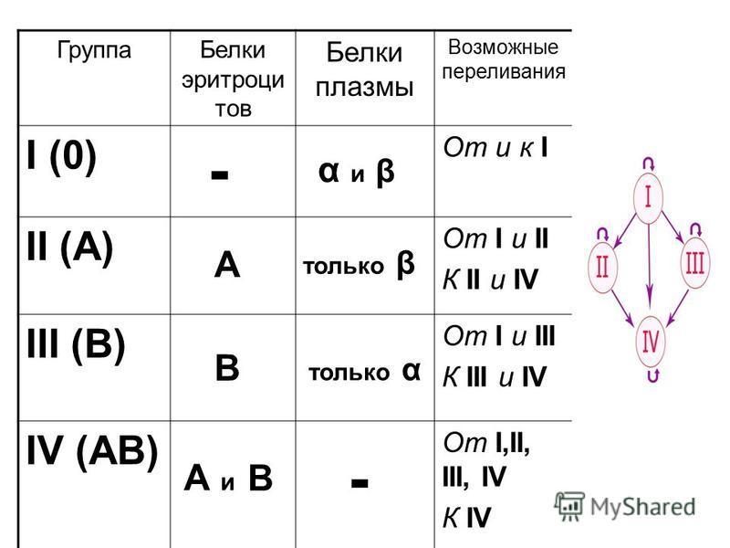 Группа Белки эритроцитов Белки плазмы Возможные переливания Генотипы I (0) От и к II O II (A) От I и II К II и IV I A I A I O III (B) От I и III К III и IV I B I B I O IV (AB) От I,II, III, IV К IV I A I B - А В А и В α и β только β только α -