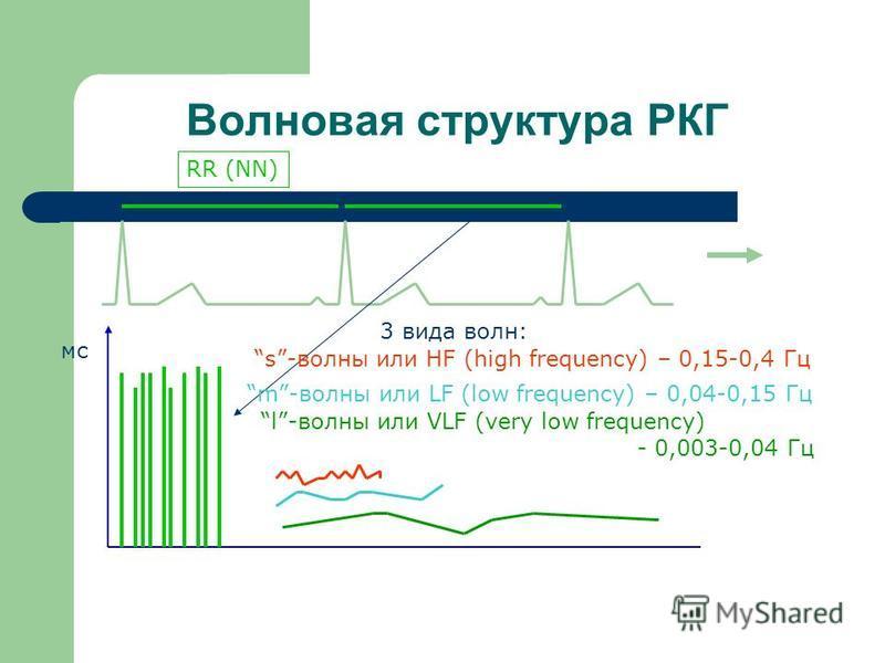 Волновая структура РКГ RR (NN) мс 3 вида волн: s-волны или HF (high frequency) – 0,15-0,4 Гц m-волны или LF (low frequency) – 0,04-0,15 Гц l-волны или VLF (very low frequency) - 0,003-0,04 Гц