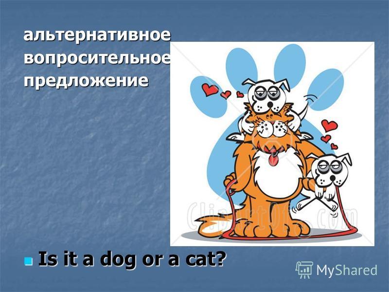 альтернативное вопросительное предложение Is it a dog or a cat? Is it a dog or a cat?