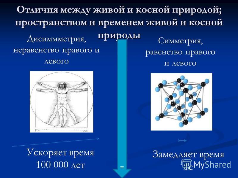 Отличия между живой и косной природой; пространством и временем живой и косной природы = Дисиммметрия, неравенство правого и левого Симметрия, равенство правого и левого Ускоряет время 100 000 лет Замедляет время 1 с