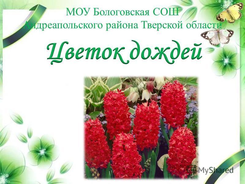 МОУ Бологовская СОШ Андреапольского района Тверской области