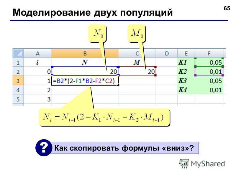 65 Моделирование двух популяций Как скопировать формулы «вниз»? ?