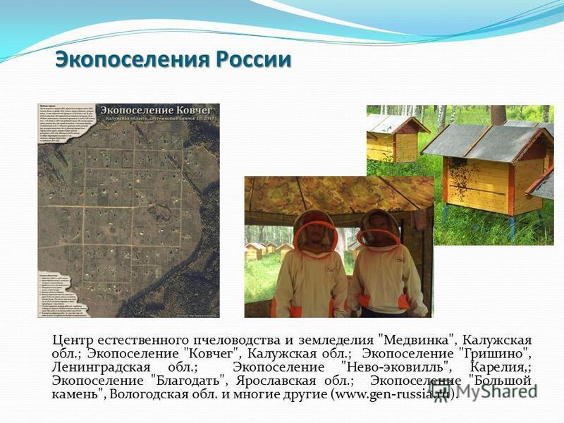 Экопоселения России Центр естественного пчеловодства и земледелия
